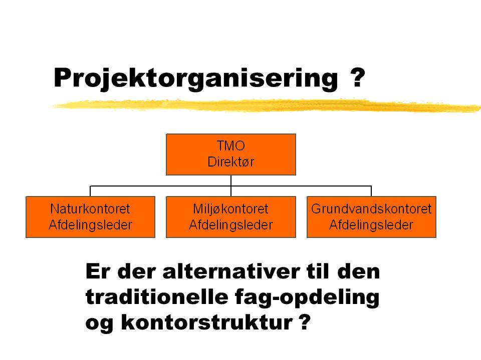Projektorganisering Er der alternativer til den traditionelle fag-opdeling og kontorstruktur