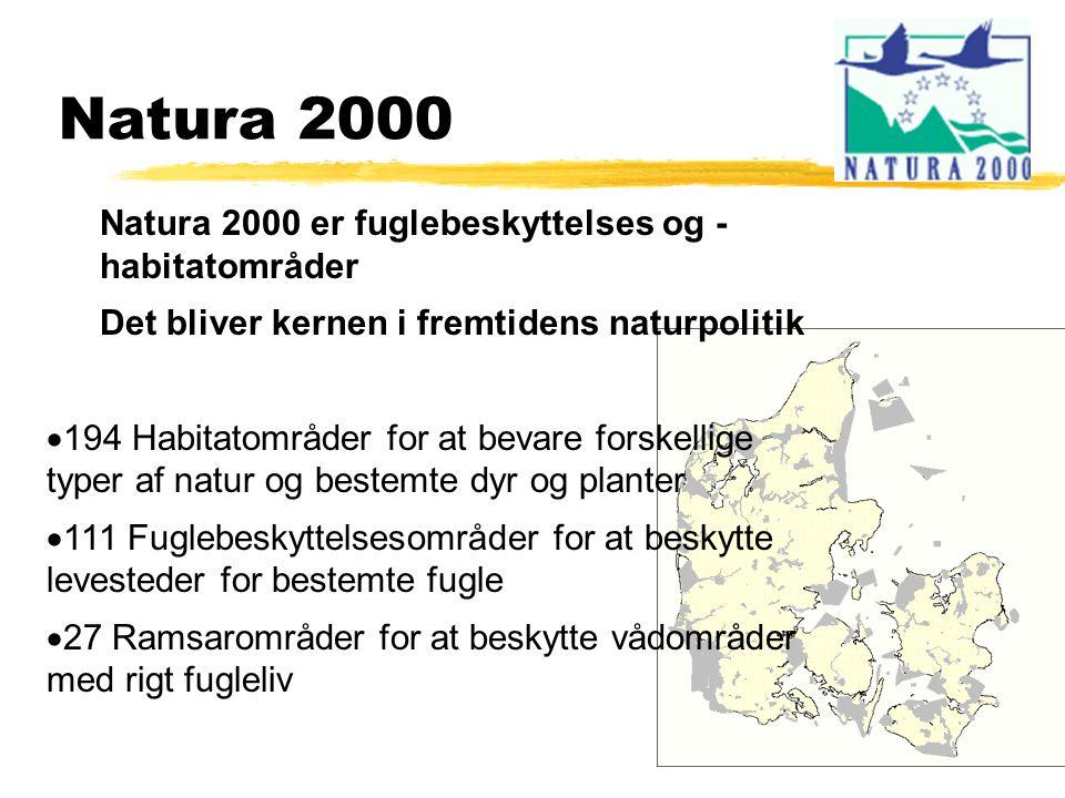 Natura 2000 Natura 2000 er fuglebeskyttelses og - habitatområder Det bliver kernen i fremtidens naturpolitik  194 Habitatområder for at bevare forskellige typer af natur og bestemte dyr og planter  111 Fuglebeskyttelsesområder for at beskytte levesteder for bestemte fugle  27 Ramsarområder for at beskytte vådområder med rigt fugleliv