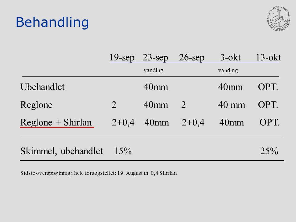 Behandling 19-sep 23-sep 26-sep 3-okt 13-okt vanding vanding Ubehandlet 40mm 40mm OPT.