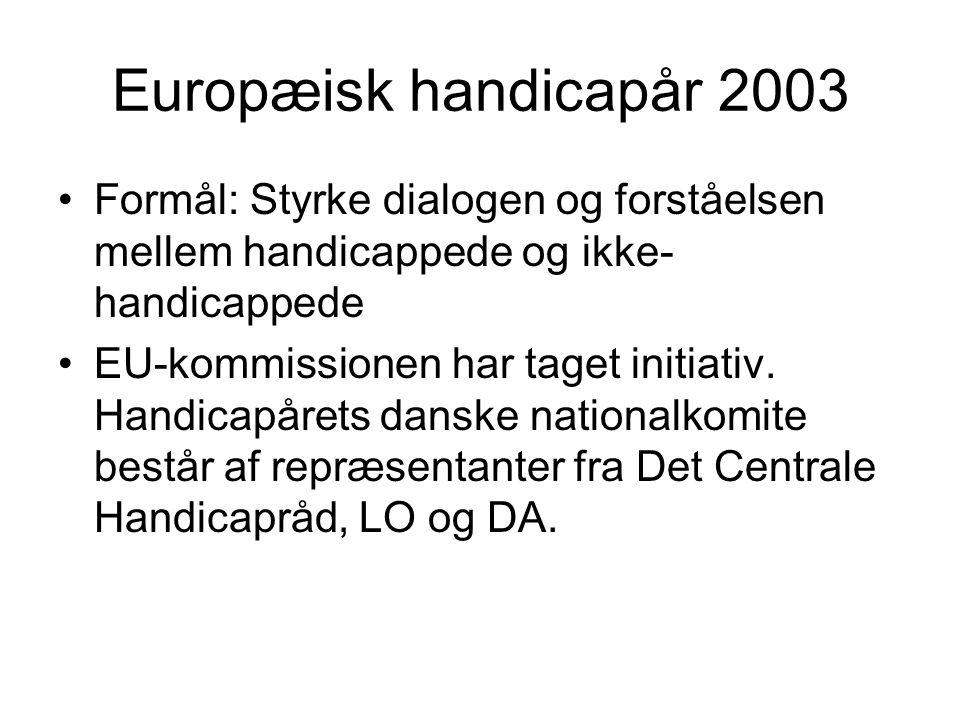 Europæisk handicapår 2003 Formål: Styrke dialogen og forståelsen mellem handicappede og ikke- handicappede EU-kommissionen har taget initiativ.
