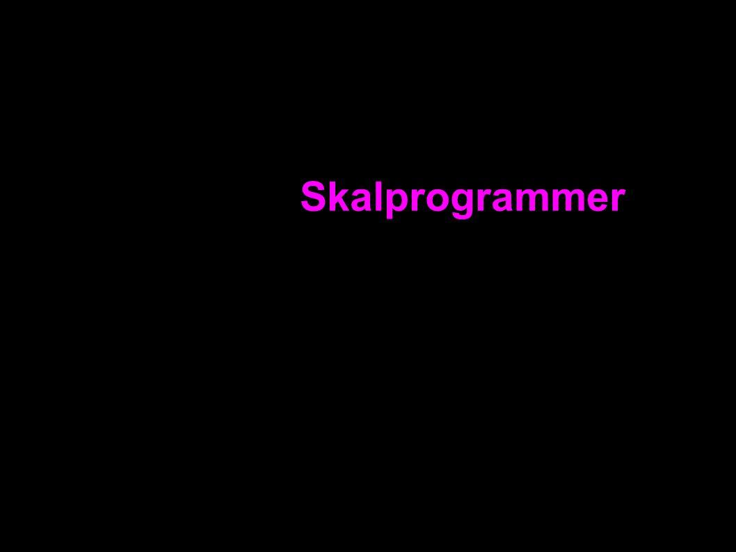 Skalprogrammer