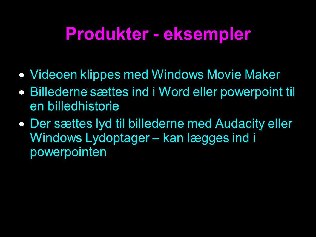 Produkter - eksempler  Videoen klippes med Windows Movie Maker  Billederne sættes ind i Word eller powerpoint til en billedhistorie  Der sættes lyd til billederne med Audacity eller Windows Lydoptager – kan lægges ind i powerpointen