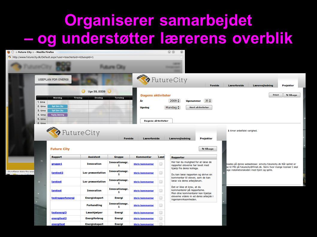 Organiserer samarbejdet – og understøtter lærerens overblik