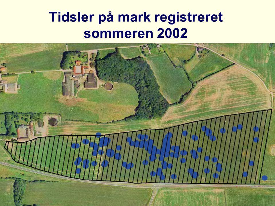Tidsler på mark registreret sommeren 2002
