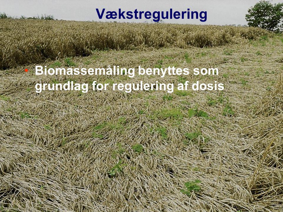 Vækstregulering Biomassemåling benyttes som grundlag for regulering af dosis