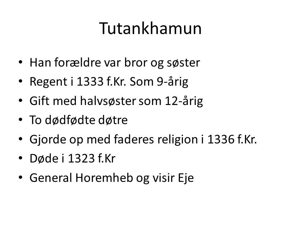 Tutankhamun Han forældre var bror og søster Regent i 1333 f.Kr.
