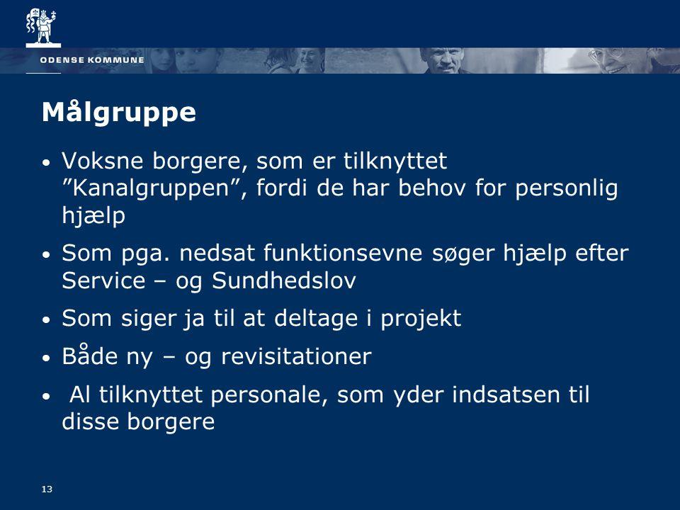 13 Målgruppe Voksne borgere, som er tilknyttet Kanalgruppen , fordi de har behov for personlig hjælp Som pga.