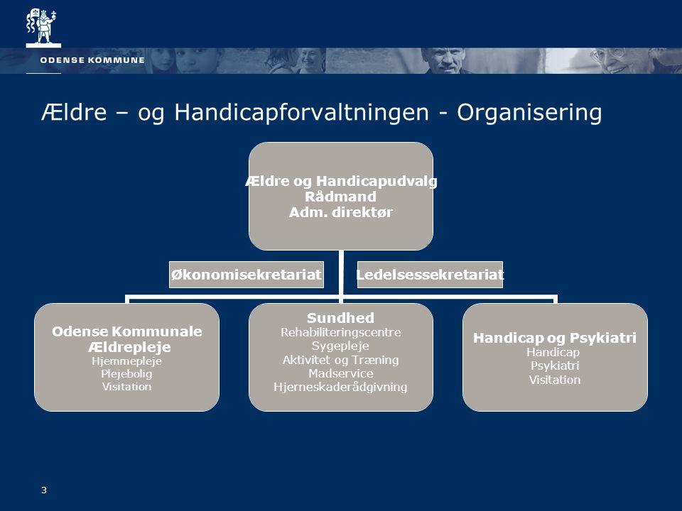 3 Ældre – og Handicapforvaltningen - Organisering Ældre og Handicapudvalg Rådmand Adm.