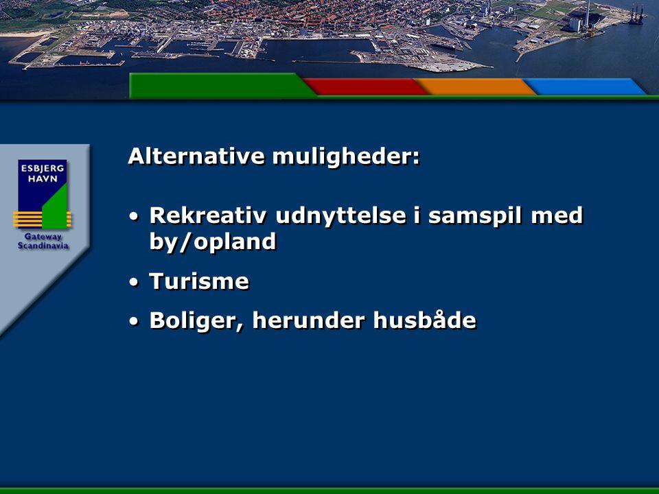 Alternative muligheder: Rekreativ udnyttelse i samspil med by/opland Turisme Boliger, herunder husbåde Rekreativ udnyttelse i samspil med by/opland Turisme Boliger, herunder husbåde