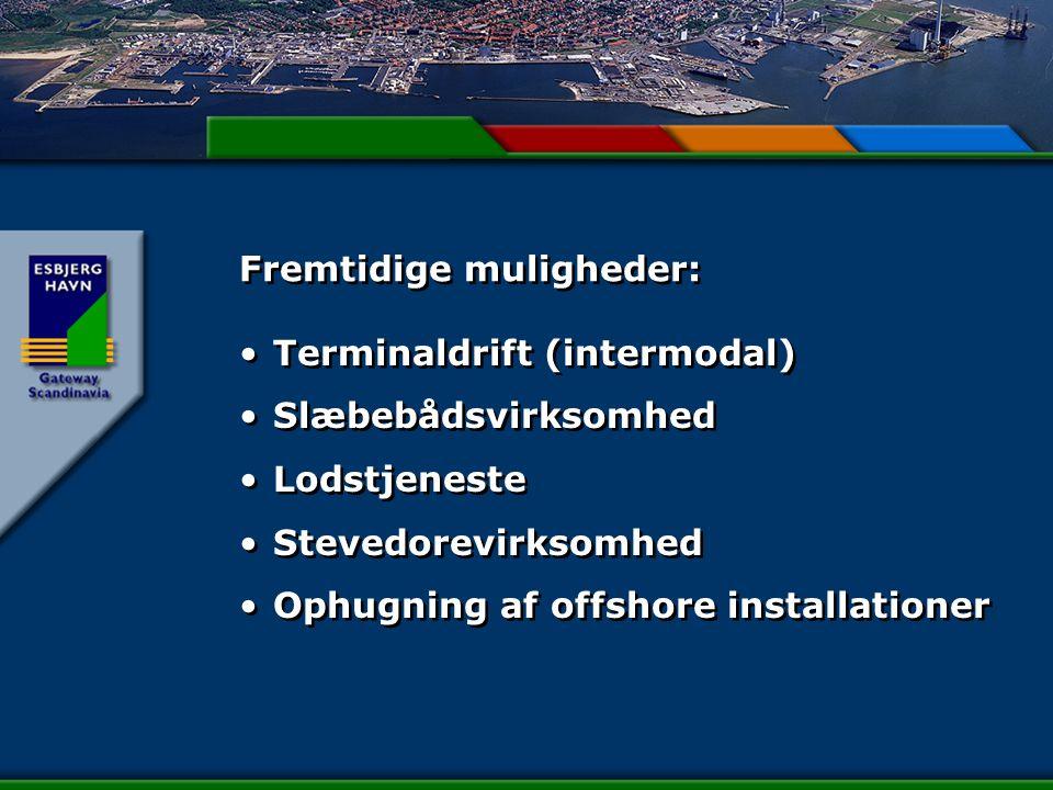 Fremtidige muligheder: Terminaldrift (intermodal) Slæbebådsvirksomhed Lodstjeneste Stevedorevirksomhed Ophugning af offshore installationer Terminaldrift (intermodal) Slæbebådsvirksomhed Lodstjeneste Stevedorevirksomhed Ophugning af offshore installationer