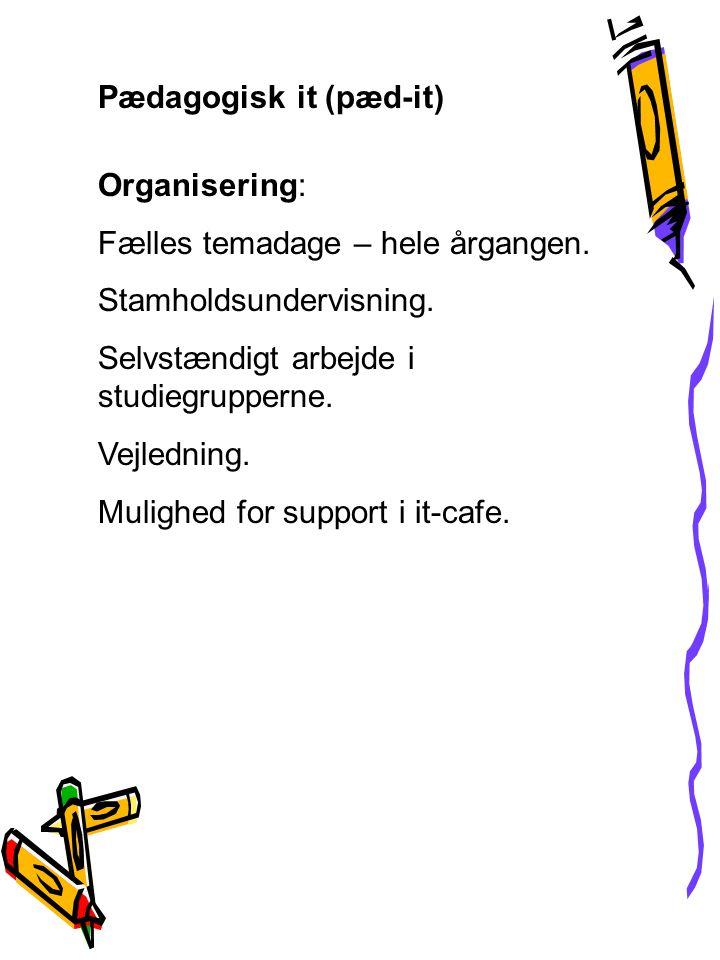 Pædagogisk it (pæd-it) Organisering: Fælles temadage – hele årgangen.
