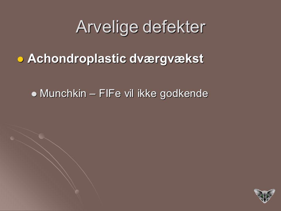 Arvelige defekter Achondroplastic dværgvækst Achondroplastic dværgvækst Munchkin – FIFe vil ikke godkende Munchkin – FIFe vil ikke godkende