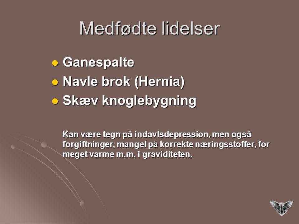 Medfødte lidelser Ganespalte Ganespalte Navle brok (Hernia) Navle brok (Hernia) Skæv knoglebygning Skæv knoglebygning Kan være tegn på indavlsdepression, men også forgiftninger, mangel på korrekte næringsstoffer, for meget varme m.m.