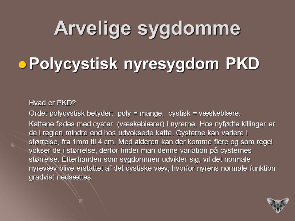 Arvelige sygdomme Polycystisk nyresygdom PKD Polycystisk nyresygdom PKD Hvad er PKD.
