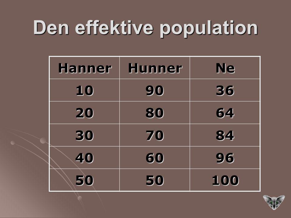 Den effektive population HannerHunnerNe 109036 208064 307084 406096 5050100