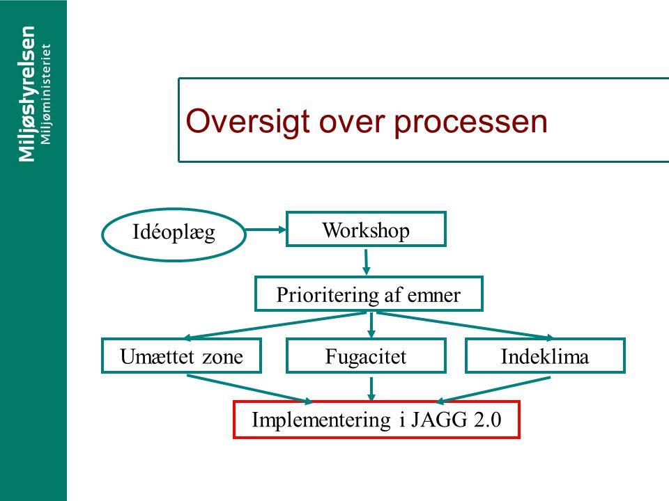 Oversigt over processen Prioritering af emner Workshop IndeklimaUmættet zoneFugacitet Implementering i JAGG 2.0 Idéoplæg