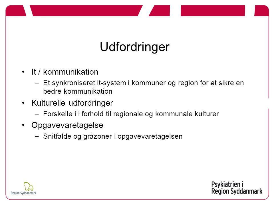Udfordringer It / kommunikation –Et synkroniseret it-system i kommuner og region for at sikre en bedre kommunikation Kulturelle udfordringer –Forskelle i i forhold til regionale og kommunale kulturer Opgavevaretagelse –Snitfalde og gråzoner i opgavevaretagelsen