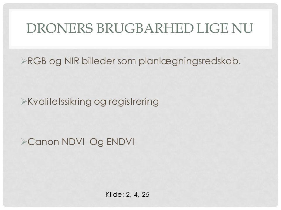 DRONERS BRUGBARHED LIGE NU  RGB og NIR billeder som planlægningsredskab.