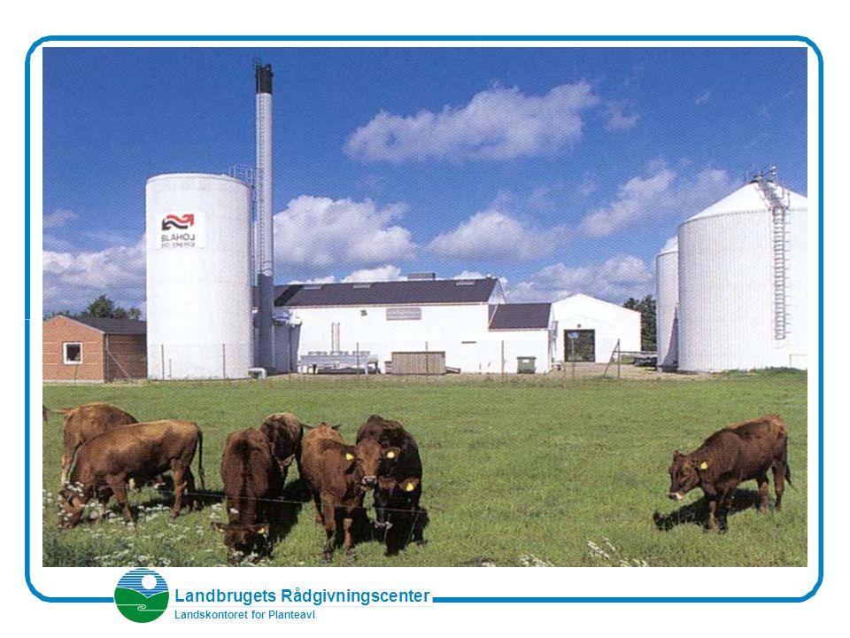Landbrugets Rådgivningscenter Landskontoret for Planteavl