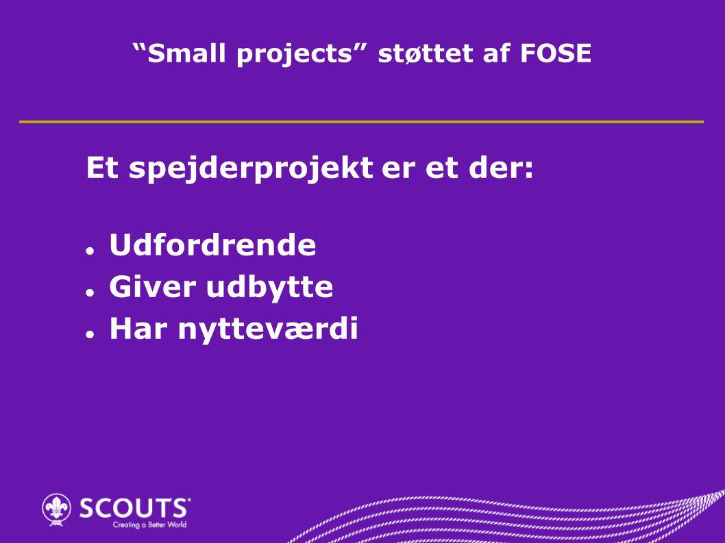 Small projects støttet af FOSE Et spejderprojekt er et der: Udfordrende Giver udbytte Har nytteværdi