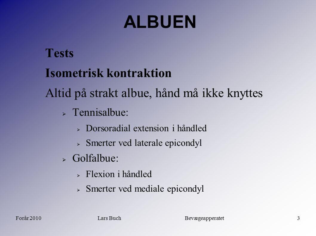 Forår 2010Lars Buch Bevægeapperatet3 ALBUEN Tests Isometrisk kontraktion Altid på strakt albue, hånd må ikke knyttes  Tennisalbue:  Dorsoradial exte