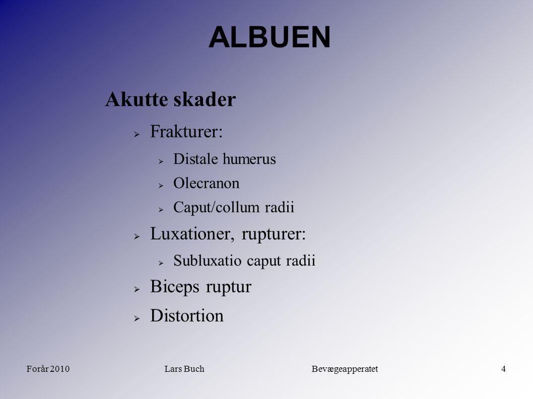 Forår 2010Lars Buch Bevægeapperatet4 ALBUEN Akutte skader  Frakturer:  Distale humerus  Olecranon  Caput/collum radii  Luxationer, rupturer:  Su