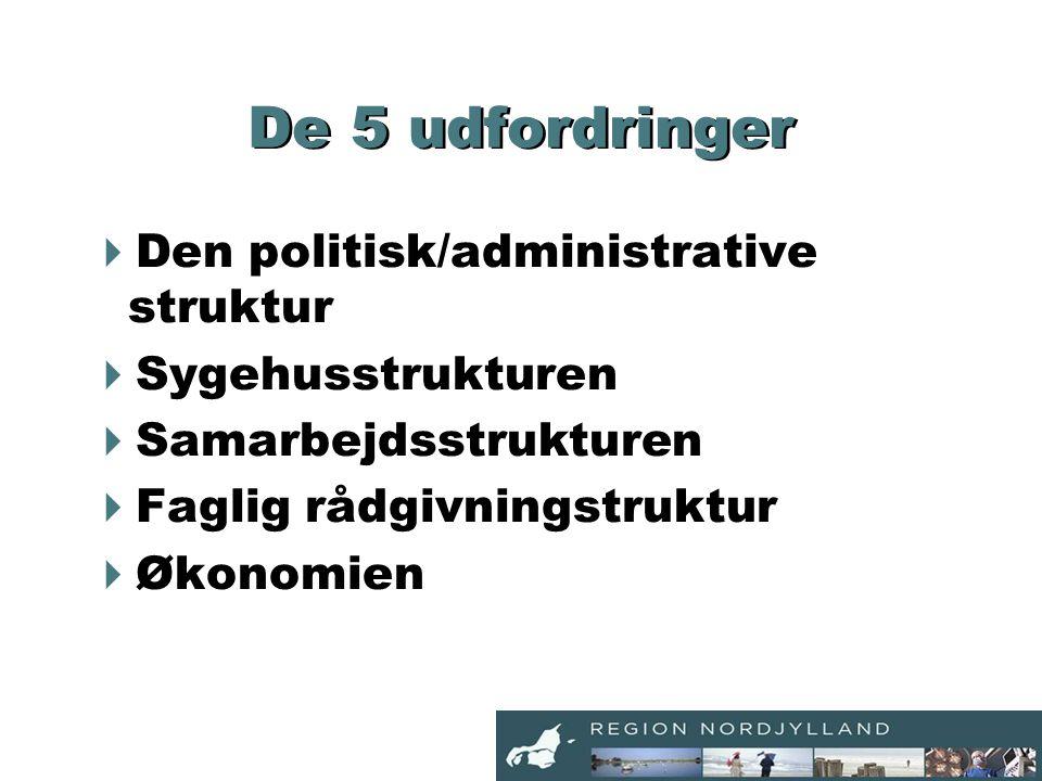 De 5 udfordringer  Den politisk/administrative struktur  Sygehusstrukturen  Samarbejdsstrukturen  Faglig rådgivningstruktur  Økonomien