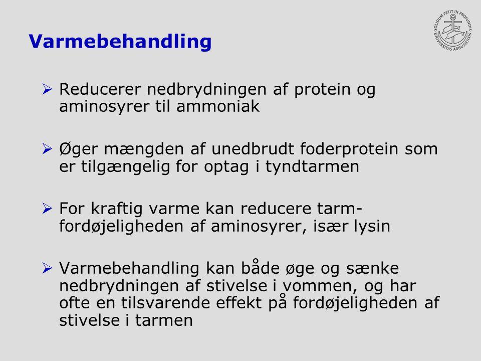 Varmebehandling  Reducerer nedbrydningen af protein og aminosyrer til ammoniak  Øger mængden af unedbrudt foderprotein som er tilgængelig for optag i tyndtarmen  For kraftig varme kan reducere tarm- fordøjeligheden af aminosyrer, især lysin  Varmebehandling kan både øge og sænke nedbrydningen af stivelse i vommen, og har ofte en tilsvarende effekt på fordøjeligheden af stivelse i tarmen