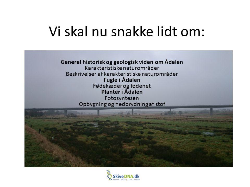 Vi skal nu snakke lidt om: Generel historisk og geologisk viden om Ådalen Karakteristiske naturområder Beskrivelser af karakteristiske naturområder Fu