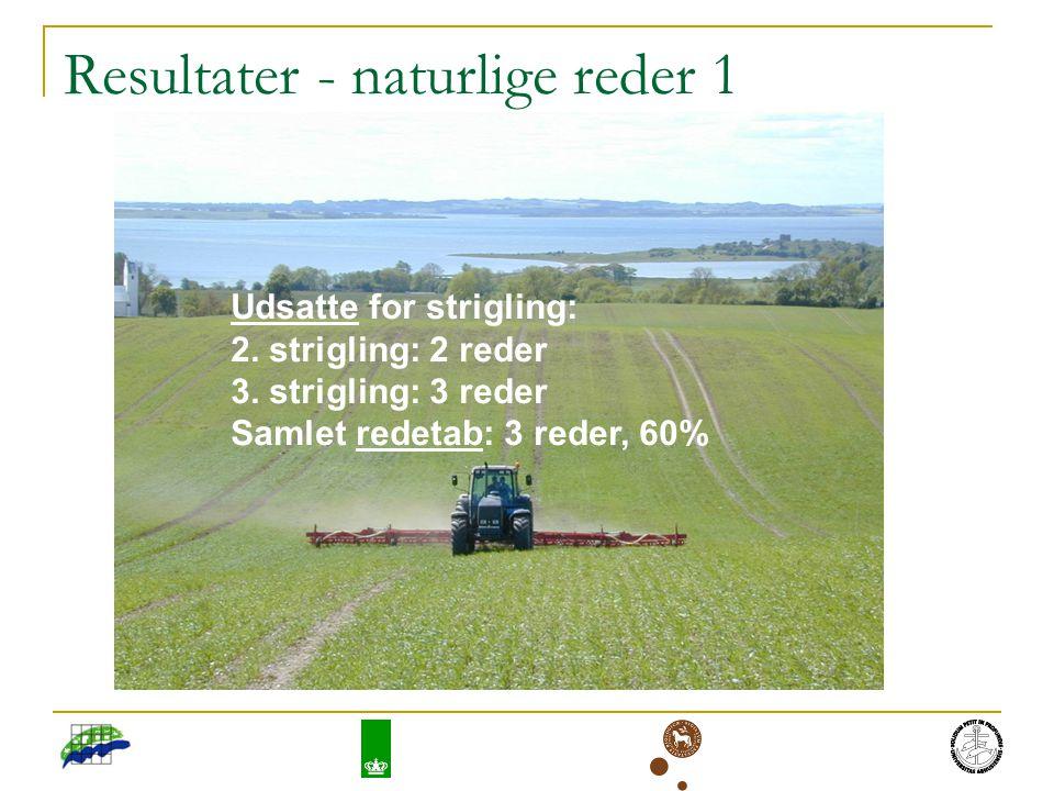 Resultater - naturlige reder 1 Udsatte for strigling: 2.