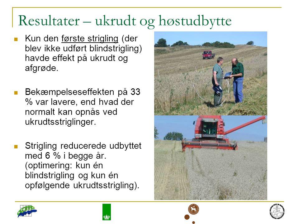 Resultater – ukrudt og høstudbytte Kun den første strigling (der blev ikke udført blindstrigling) havde effekt på ukrudt og afgrøde.