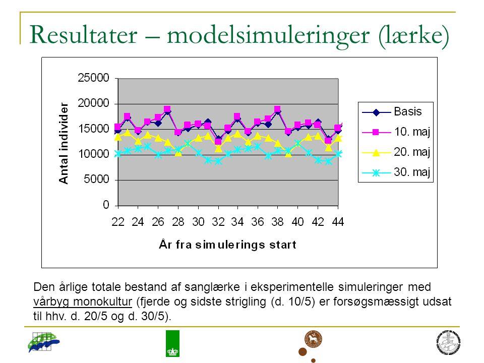Resultater – modelsimuleringer (lærke) Den årlige totale bestand af sanglærke i eksperimentelle simuleringer med vårbyg monokultur (fjerde og sidste strigling (d.