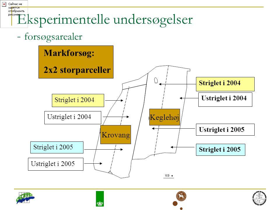 Eksperimentelle undersøgelser - forsøgsarealer Striglet i 2004 Striglet i 2005 Striglet i 2004 Ustriglet i 2005 Ustriglet i 2004 Ustriglet i 2005 Ustriglet i 2004 Striglet i 2005 Krovang Keglehøj Markforsøg: 2x2 storparceller