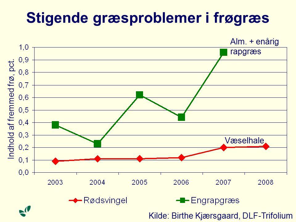 Stigende græsproblemer i frøgræs Indhold af fremmed frø, pct.