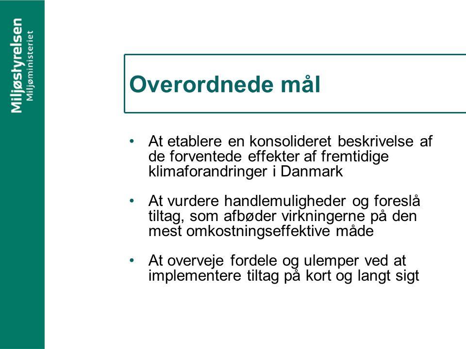 Overordnede mål At etablere en konsolideret beskrivelse af de forventede effekter af fremtidige klimaforandringer i Danmark At vurdere handlemuligheder og foreslå tiltag, som afbøder virkningerne på den mest omkostningseffektive måde At overveje fordele og ulemper ved at implementere tiltag på kort og langt sigt