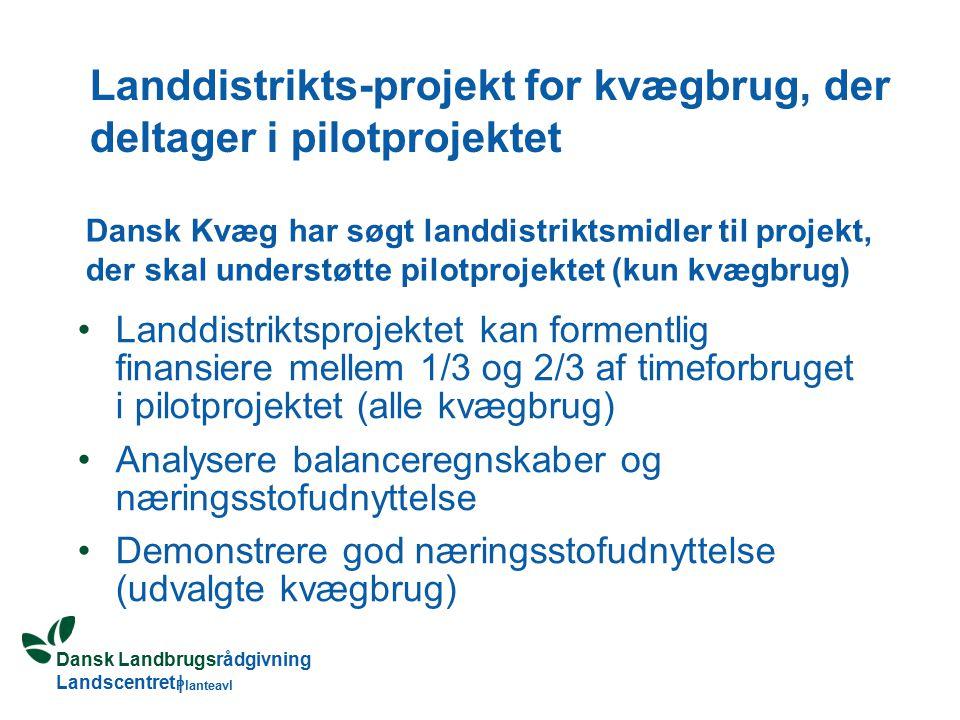 Dansk Landbrugsrådgivning Landscentret | Planteavl Landdistrikts-projekt for kvægbrug, der deltager i pilotprojektet Landdistriktsprojektet kan formentlig finansiere mellem 1/3 og 2/3 af timeforbruget i pilotprojektet (alle kvægbrug) Analysere balanceregnskaber og næringsstofudnyttelse Demonstrere god næringsstofudnyttelse (udvalgte kvægbrug) Dansk Kvæg har søgt landdistriktsmidler til projekt, der skal understøtte pilotprojektet (kun kvægbrug)