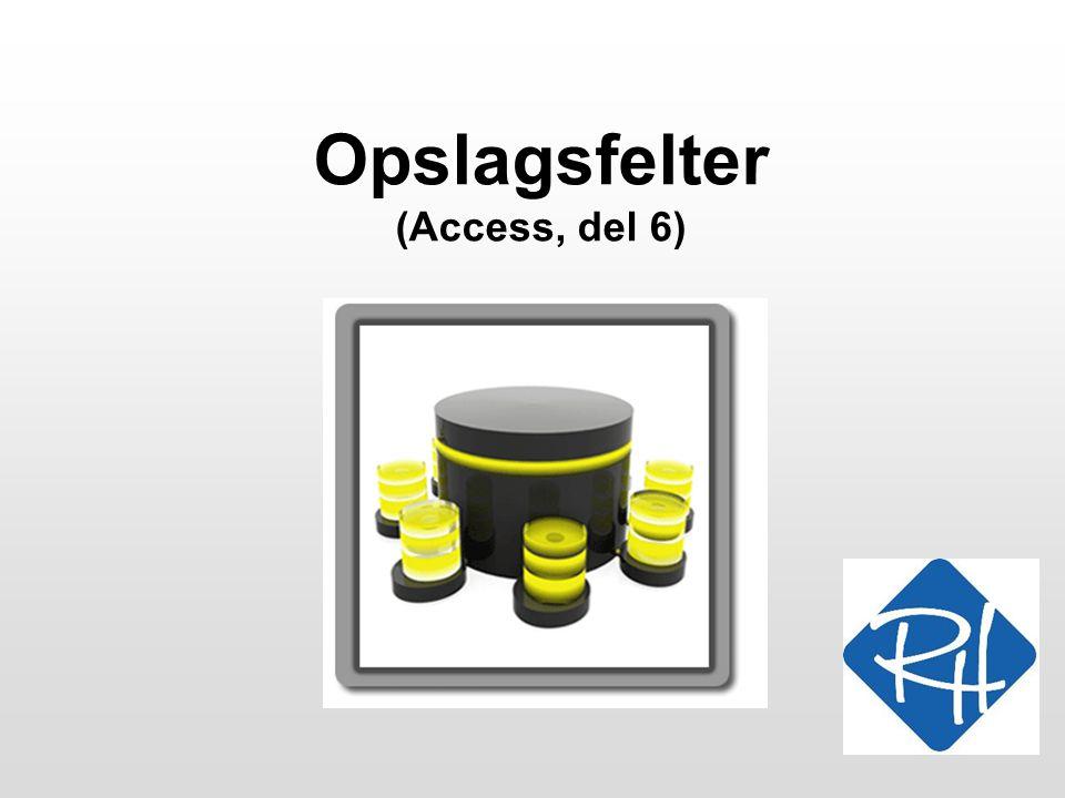 Opslagsfelter (Access, del 6)