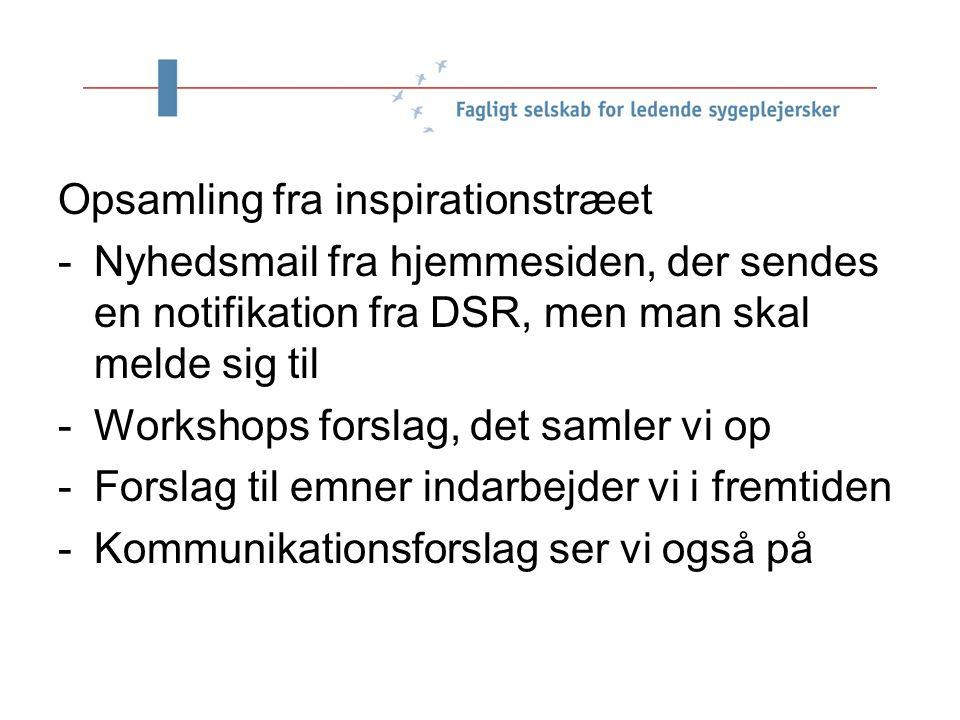 e Opsamling fra inspirationstræet -Nyhedsmail fra hjemmesiden, der sendes en notifikation fra DSR, men man skal melde sig til -Workshops forslag, det samler vi op -Forslag til emner indarbejder vi i fremtiden -Kommunikationsforslag ser vi også på