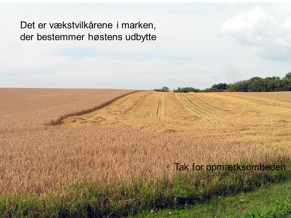 Det er vækstvilkårene i marken, der bestemmer høstens udbytte Tak for opmærksomheden
