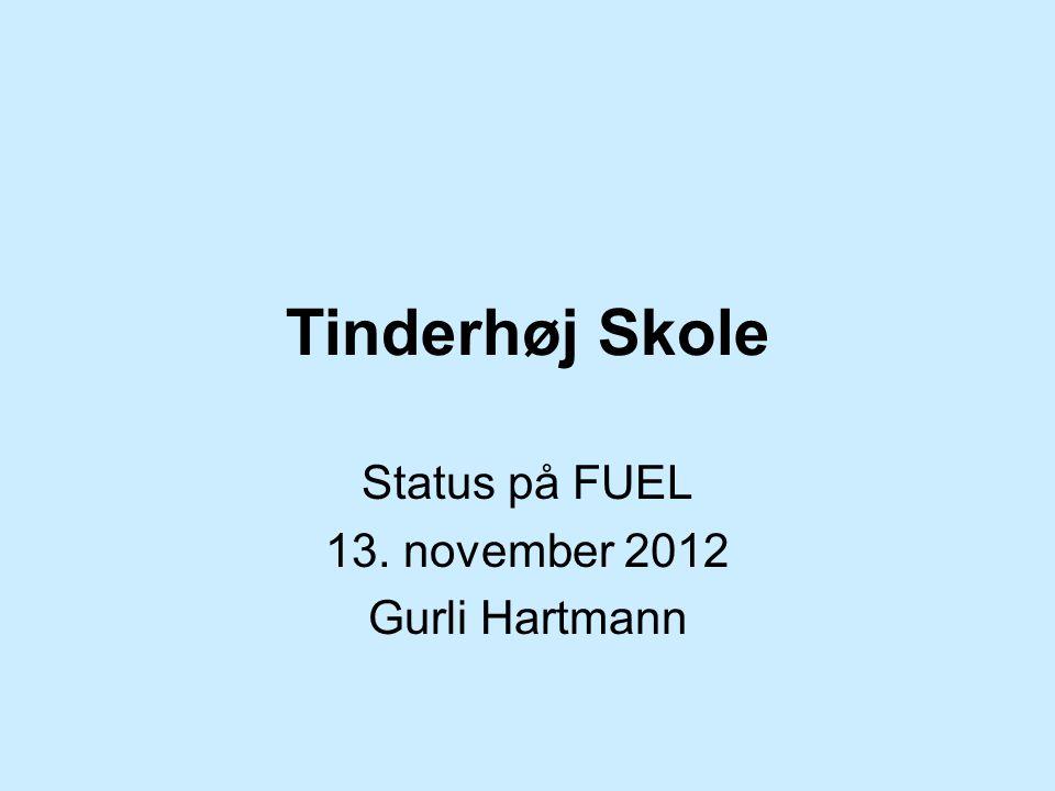 Tinderhøj Skole Status på FUEL 13. november 2012 Gurli Hartmann