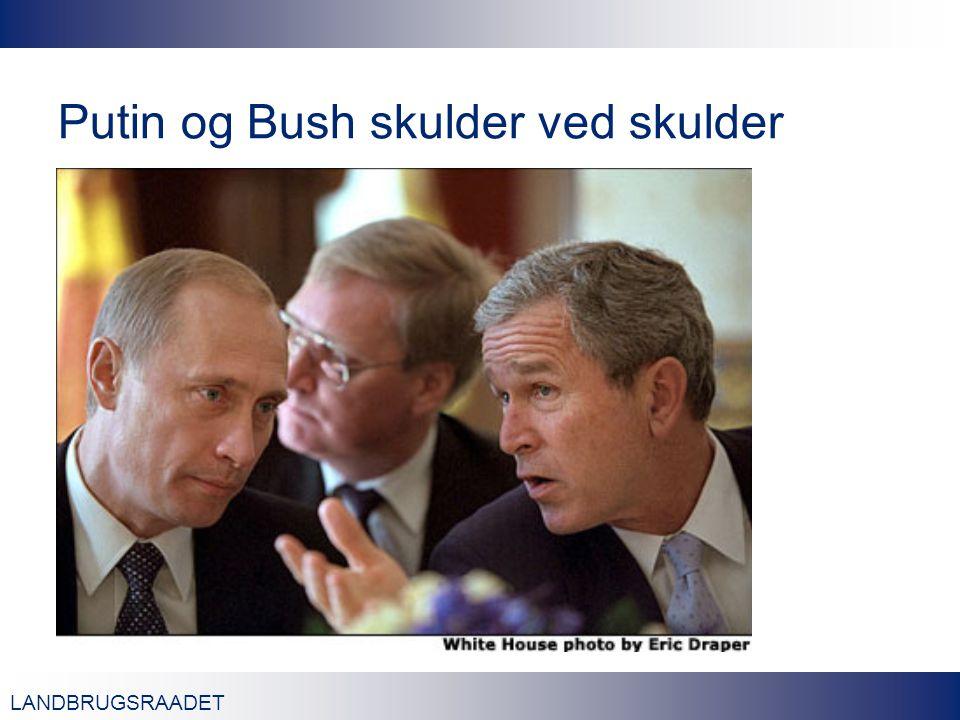LANDBRUGSRAADET Putin og Bush skulder ved skulder