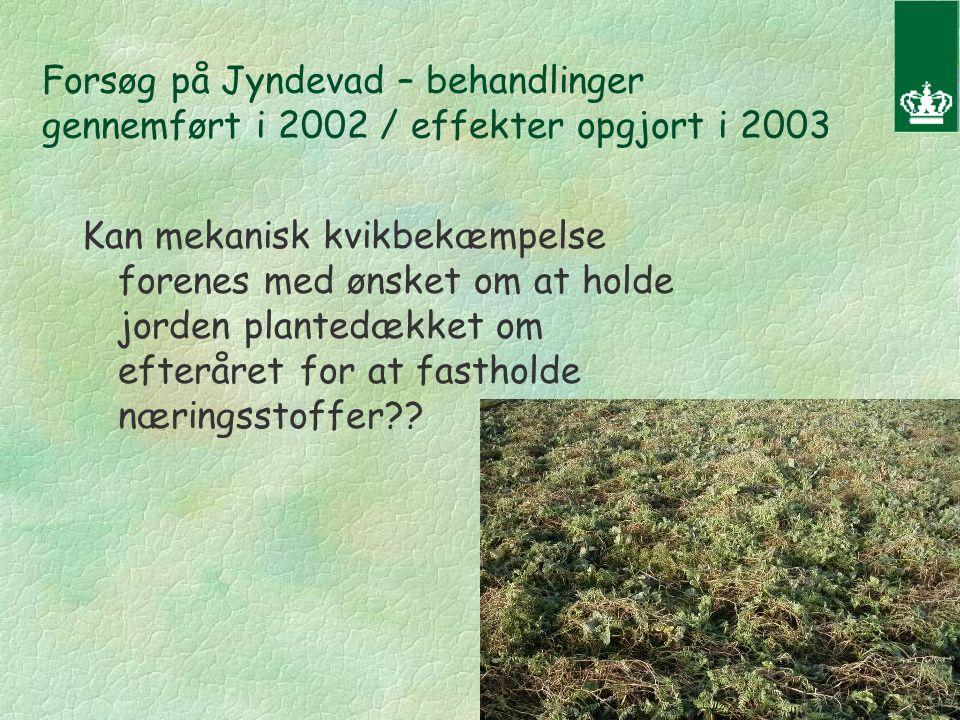 Forsøg på Jyndevad – behandlinger gennemført i 2002 / effekter opgjort i 2003 Kan mekanisk kvikbekæmpelse forenes med ønsket om at holde jorden plantedækket om efteråret for at fastholde næringsstoffer