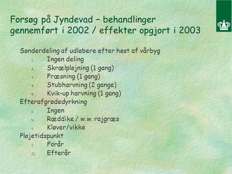 Forsøg på Jyndevad – behandlinger gennemført i 2002 / effekter opgjort i 2003 Sønderdeling af udløbere efter høst af vårbyg 1.