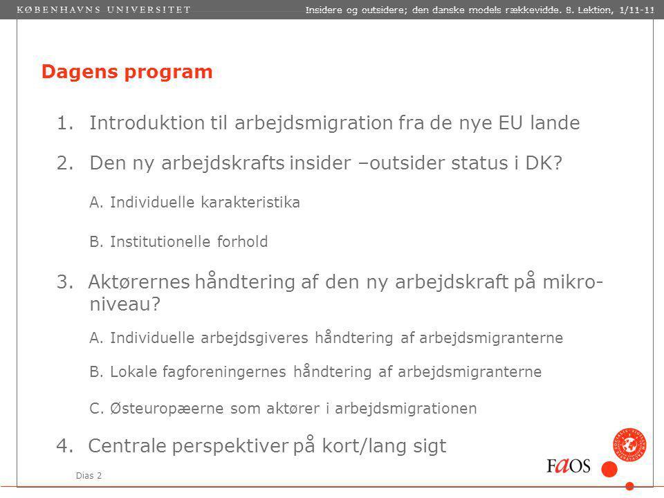 Dias 2 Insidere og outsidere; den danske models rækkevidde.