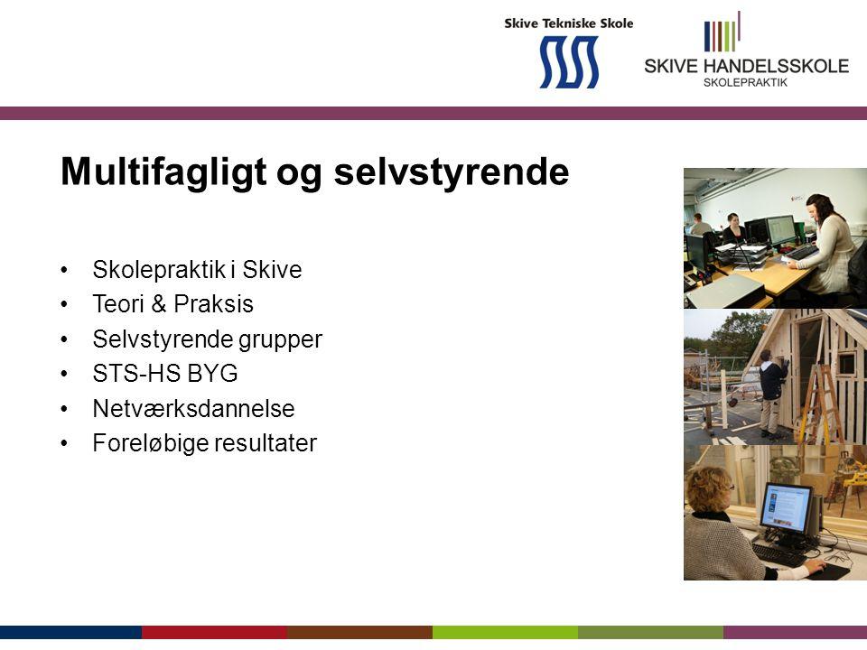 Multifagligt og selvstyrende Skolepraktik i Skive Teori & Praksis Selvstyrende grupper STS-HS BYG Netværksdannelse Foreløbige resultater