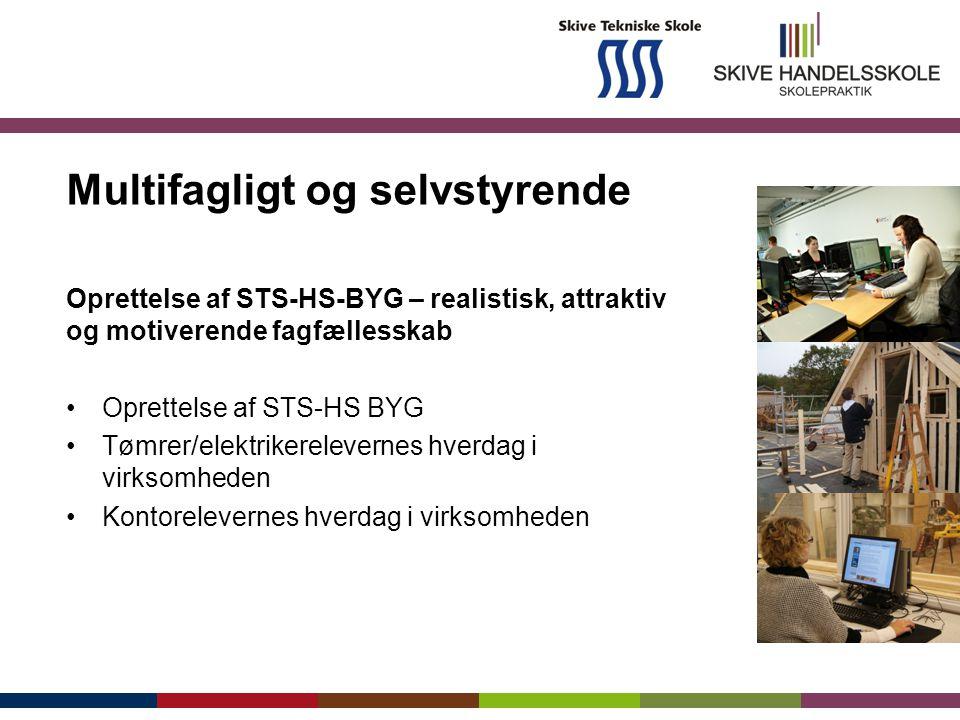 Multifagligt og selvstyrende Oprettelse af STS-HS-BYG – realistisk, attraktiv og motiverende fagfællesskab Oprettelse af STS-HS BYG Tømrer/elektrikerelevernes hverdag i virksomheden Kontorelevernes hverdag i virksomheden