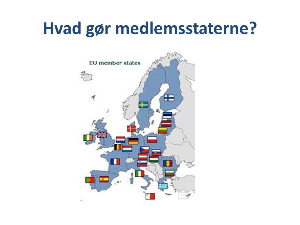 Hvad gør medlemsstaterne