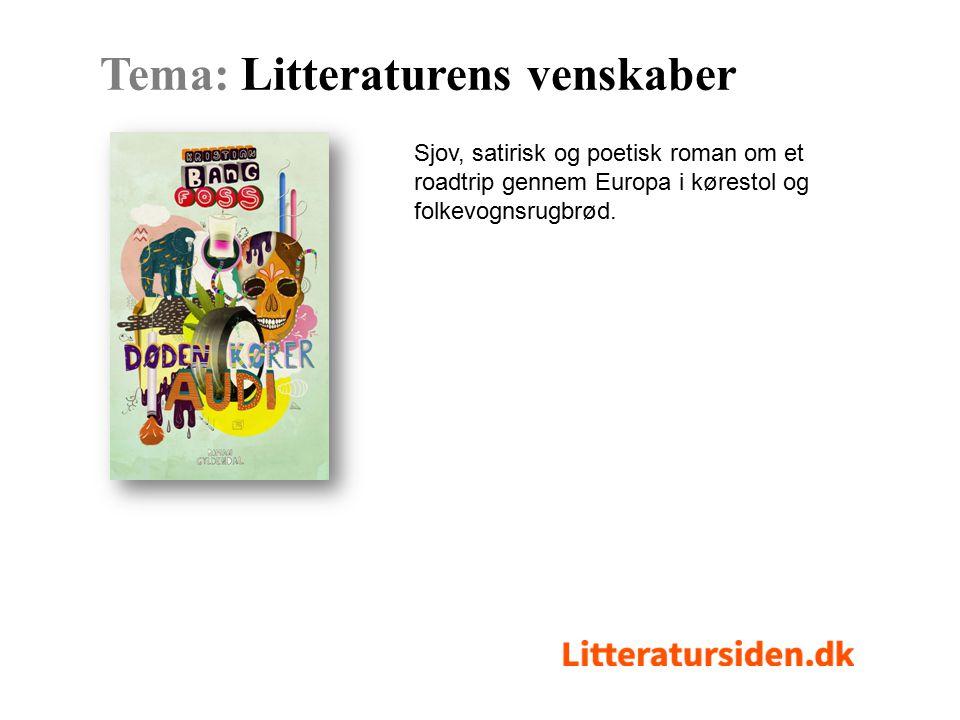 Sjov, satirisk og poetisk roman om et roadtrip gennem Europa i kørestol og folkevognsrugbrød.