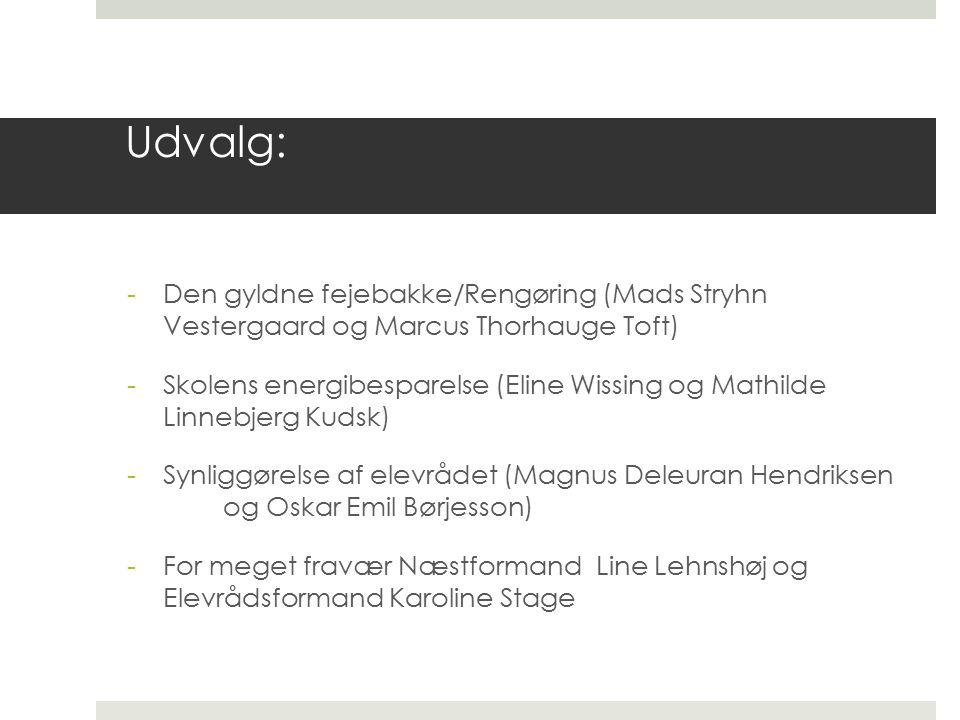 Udvalg: -Den gyldne fejebakke/Rengøring (Mads Stryhn Vestergaard og Marcus Thorhauge Toft) -Skolens energibesparelse (Eline Wissing og Mathilde Linnebjerg Kudsk) -Synliggørelse af elevrådet (Magnus Deleuran Hendriksen og Oskar Emil Børjesson) -For meget fravær Næstformand Line Lehnshøj og Elevrådsformand Karoline Stage