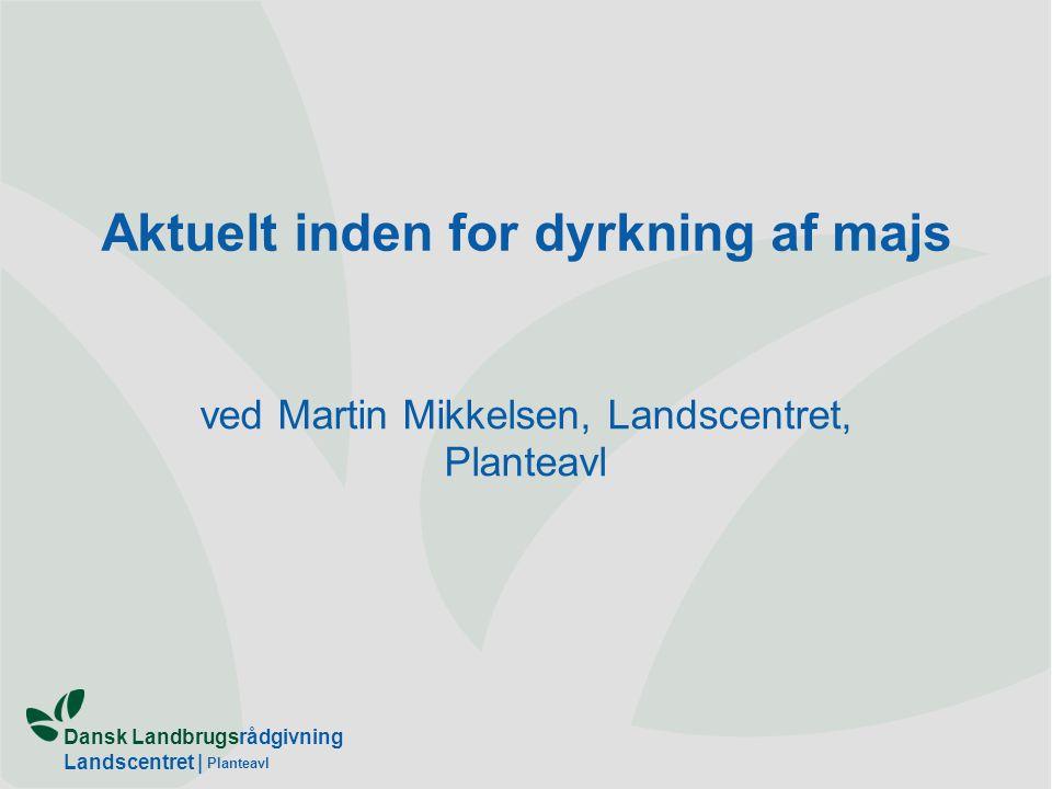 Dansk Landbrugsrådgivning Landscentret | Planteavl Aktuelt inden for dyrkning af majs ved Martin Mikkelsen, Landscentret, Planteavl